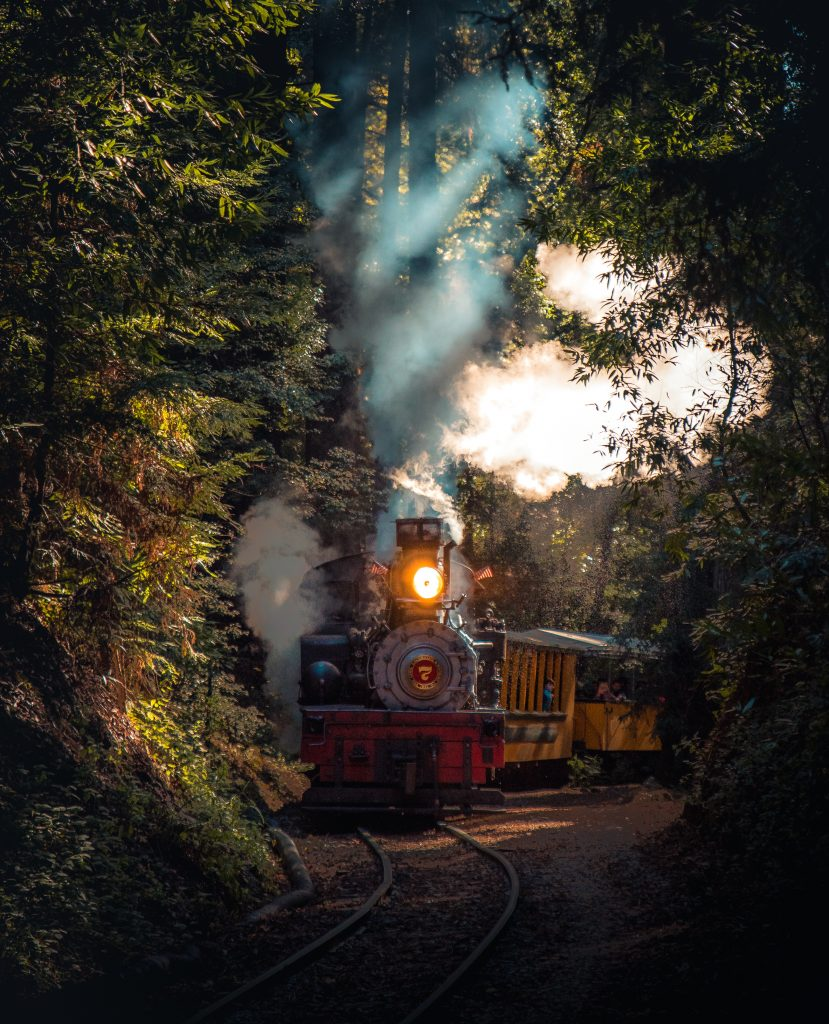 The Time Train by Thai Lynne - Twist in Time Literary Magazine